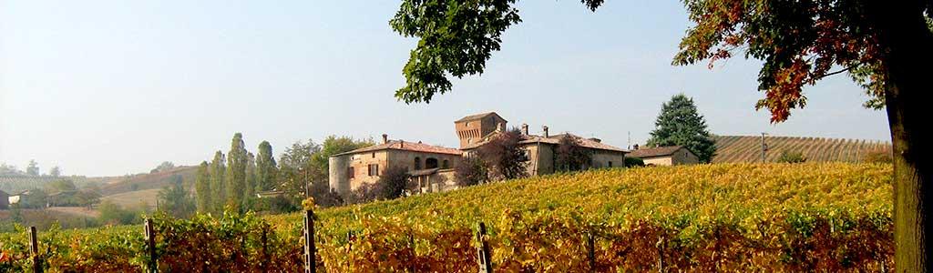 La cantina Pusterla a Castell'Arquato vini dei colli piacentini